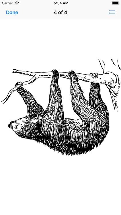 Slow Sloth Stickers screenshot-4