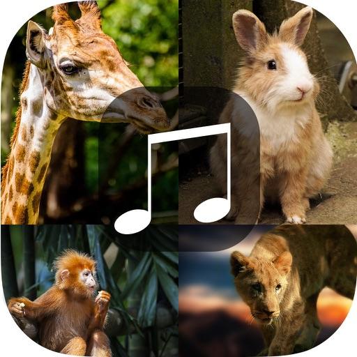 Animal Sounds - Tiger,Jaguar,Monster,Pig Squeal,Wo