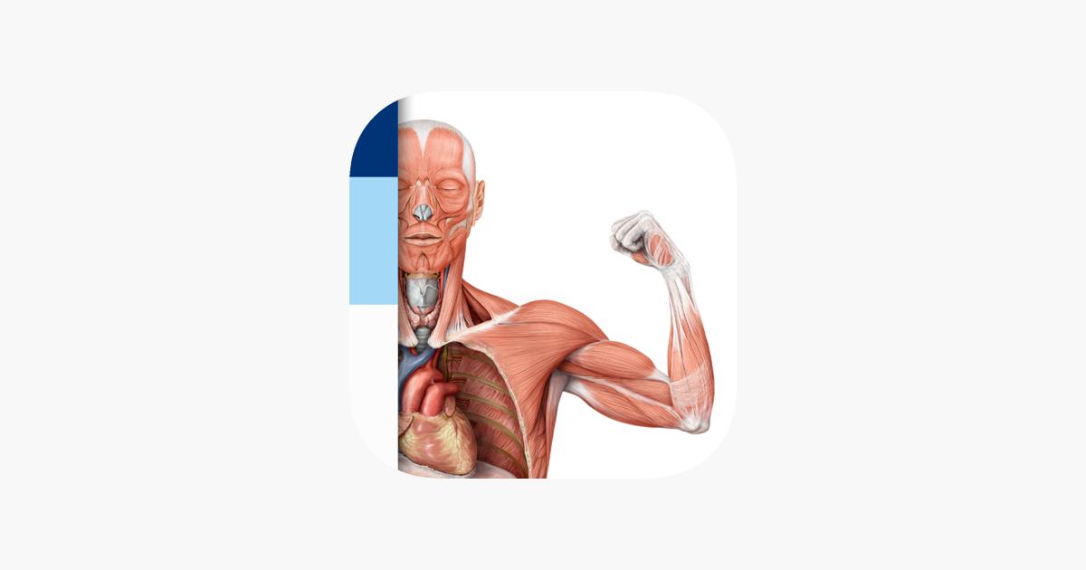 PROMETHEUS - LernKarten der Anatomie im App Store