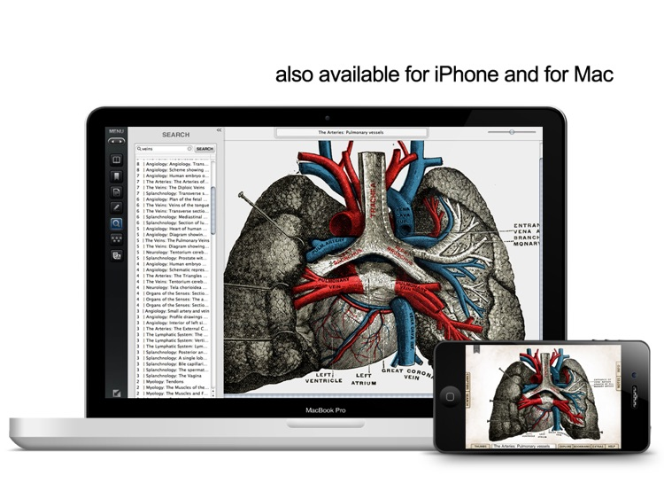 Gray's Anatomy Premium for iPad screenshot-4