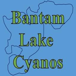 Bantam Lake Cyanos