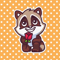 Little Cute Raccoon Stickers Pack for iMessage