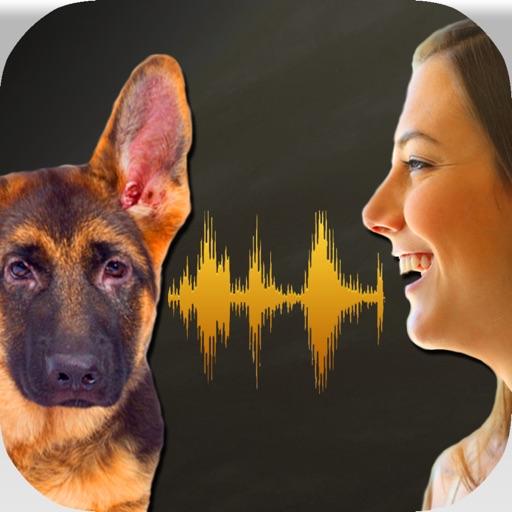 Симулятор трансляции голоса для собак