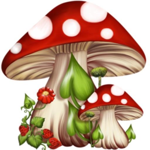 Mushroom Mania Plus