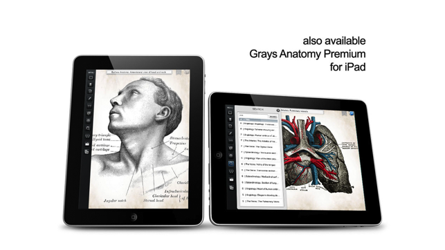 Grays Anatomy 38th Edition Ebook