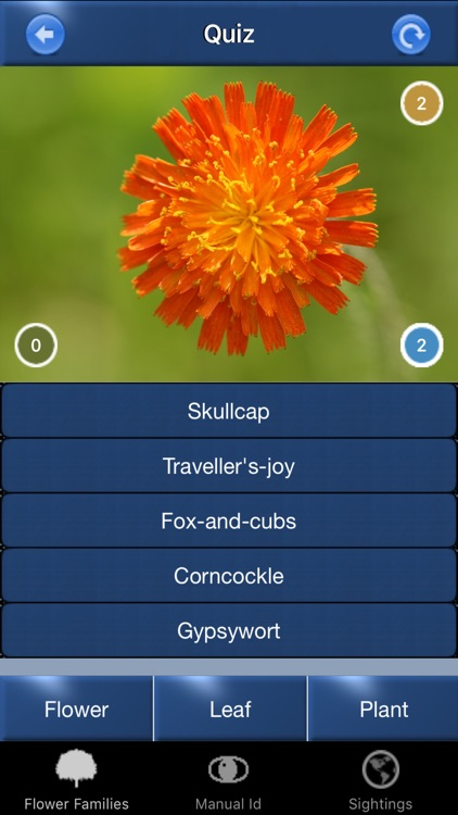 Wild Flower Id Automatic Recognition British Isles screenshot-4