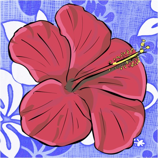 Hawaiian Words - Translation and Dictionary