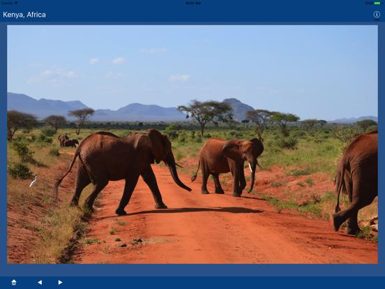 Kenya, Africa screenshot 9