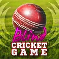Codes for Blind Cricket Hack