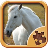 Codes for Horse Puzzle Games - Amazing Logic Puzzles Hack