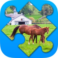 Codes for Farm Puzzles. New jigsaw puzzles Hack