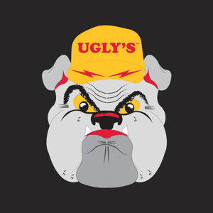 Ugly's Electrical References app