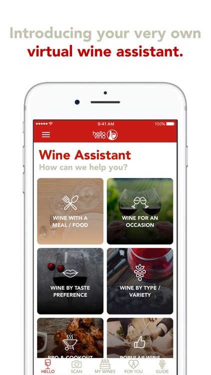 Hello Vino: Wine Assistant