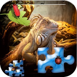 Animal and sound puzzles