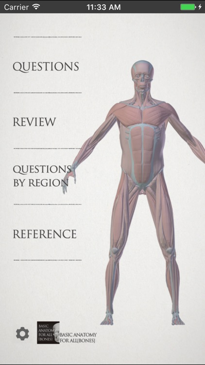 basic anatomy for all [muscles] by Sadatoshi Ito