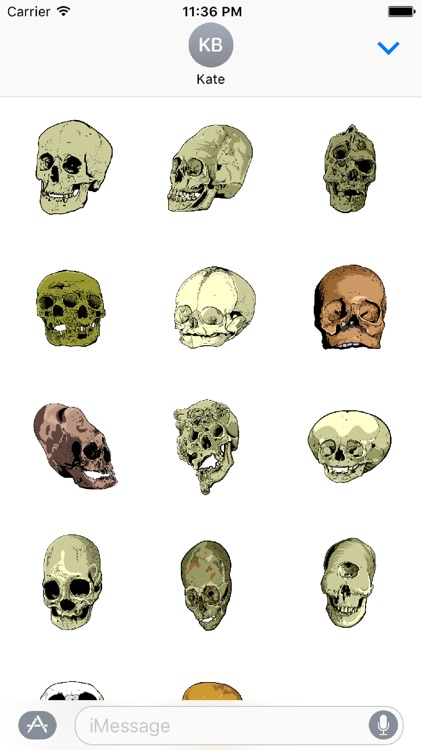 Skull Art Sticker Pack