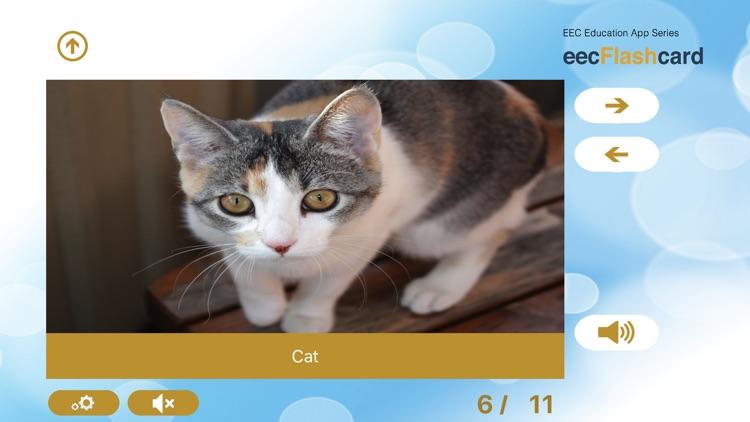 eecFlashcard: Australian Early Learning Flashcards screenshot-3
