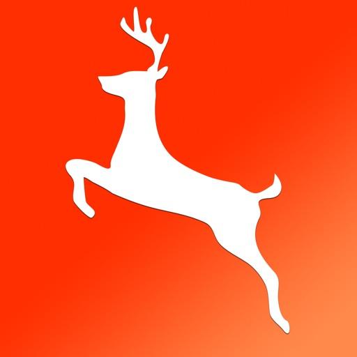 Deer Species: Amazing Creatures of the Forest