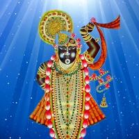 Codes for Shreenathji Live Temple Hack