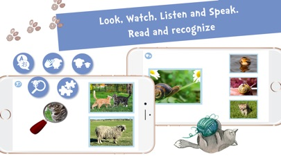 Screenshot #9 for Sami Tiny FlashCards Animals 6 languages kids apps