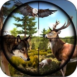 Hunting Jungle Animals Survivals