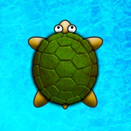 Turtle Surfer