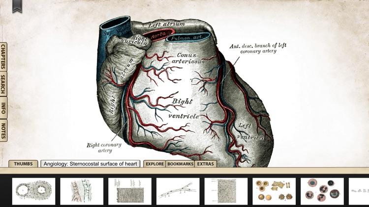 Gray's Anatomy Premium Edition screenshot-4