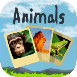 Puzzle with animals sound- Educational game