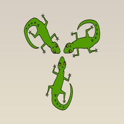 Lizard Stickers : Leaping Off Your Screen!