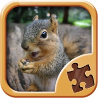 Codes for Animal Jigsaw Puzzles - Fun Logic Game Hack