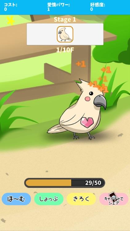 birdwatch ~healing-game~
