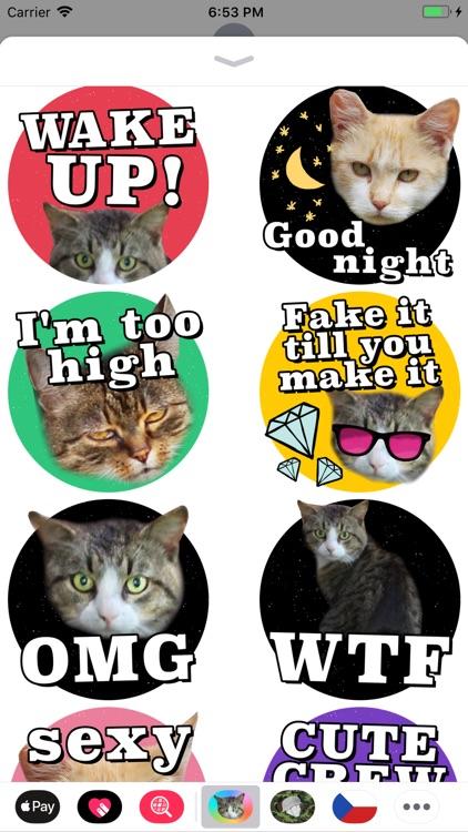 Cat Stickers Meow screenshot-3