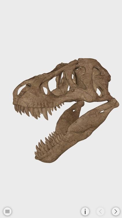 World of Dinosaurs screenshot-4