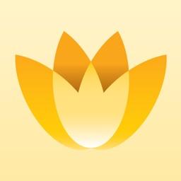 Magic Flowers - Visual Healing