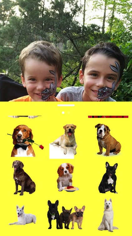 Dogs for your photos