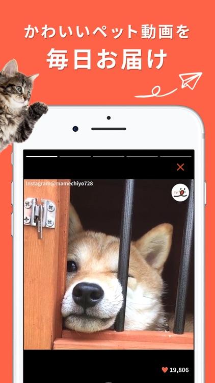 PECO(ペコ):飼い主のための機能充実ペットアプリ screenshot-0