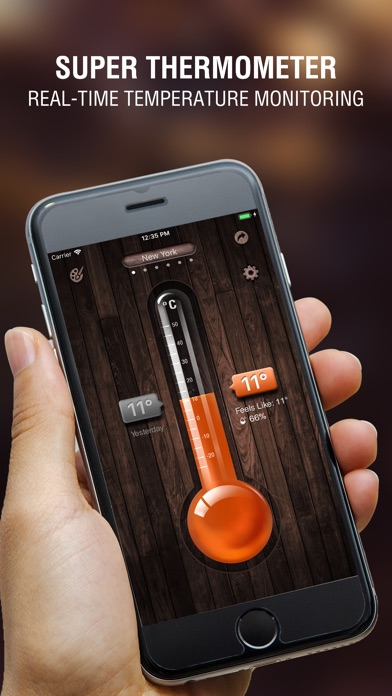 Digital Thermometer app for Windows