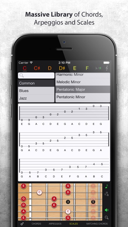 Guitar Gravitas Chords By Mad Harmony Inc