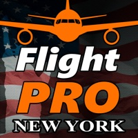Codes for Pro Flight Simulator NY 4K Hack
