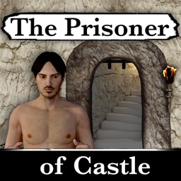 The Prisoner of Castle