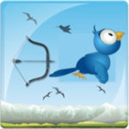 Birds Hunt With Bow & Archery