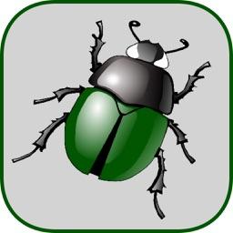 Smash the bug