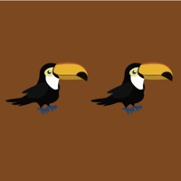Codes for Touch Same Birds Hack
