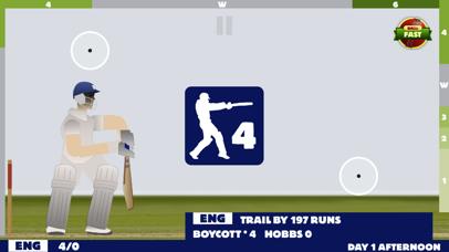 Touch Cricketのおすすめ画像1