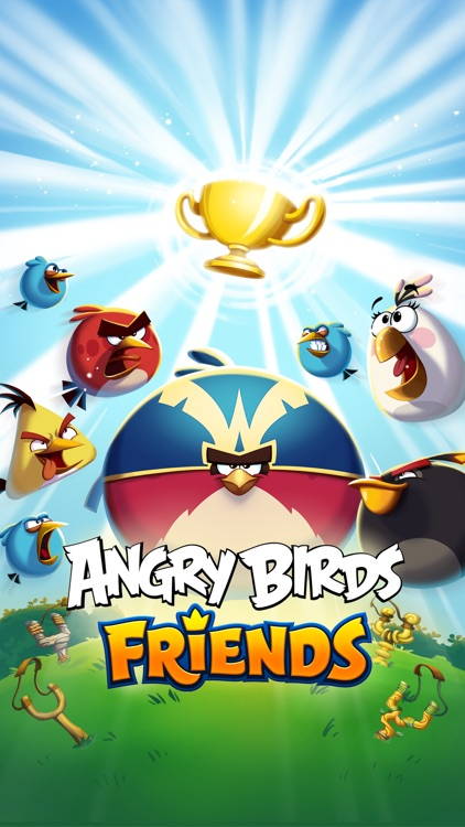 Angry Birds Friends screenshot-6