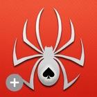 Spider ▻ Solitaire + icon