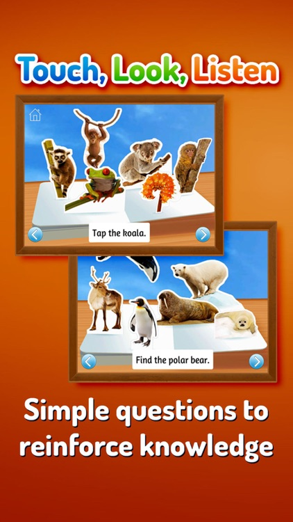 Zoo Animals ~ Touch, Look, Listen screenshot-4