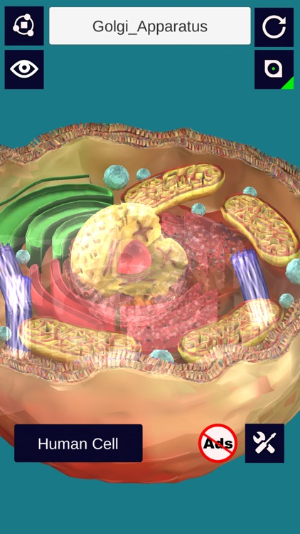 3D Cell + screenshot-4