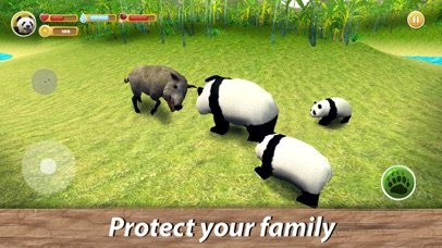 Panda Family Simulator screenshot 4