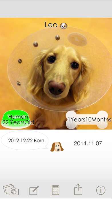 Dog Age Save pictures calculating screenshot one